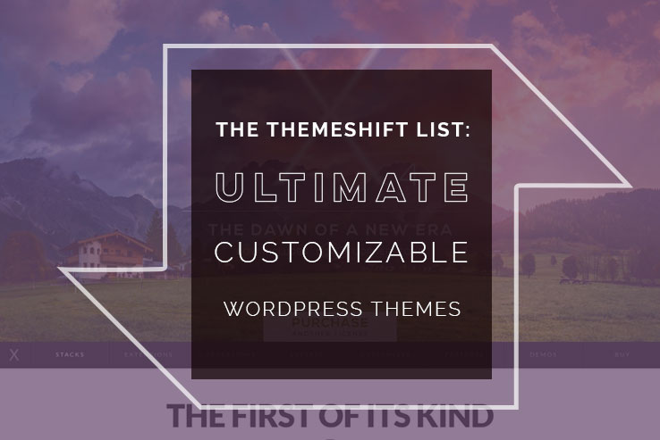 Customizable WordPress Themes